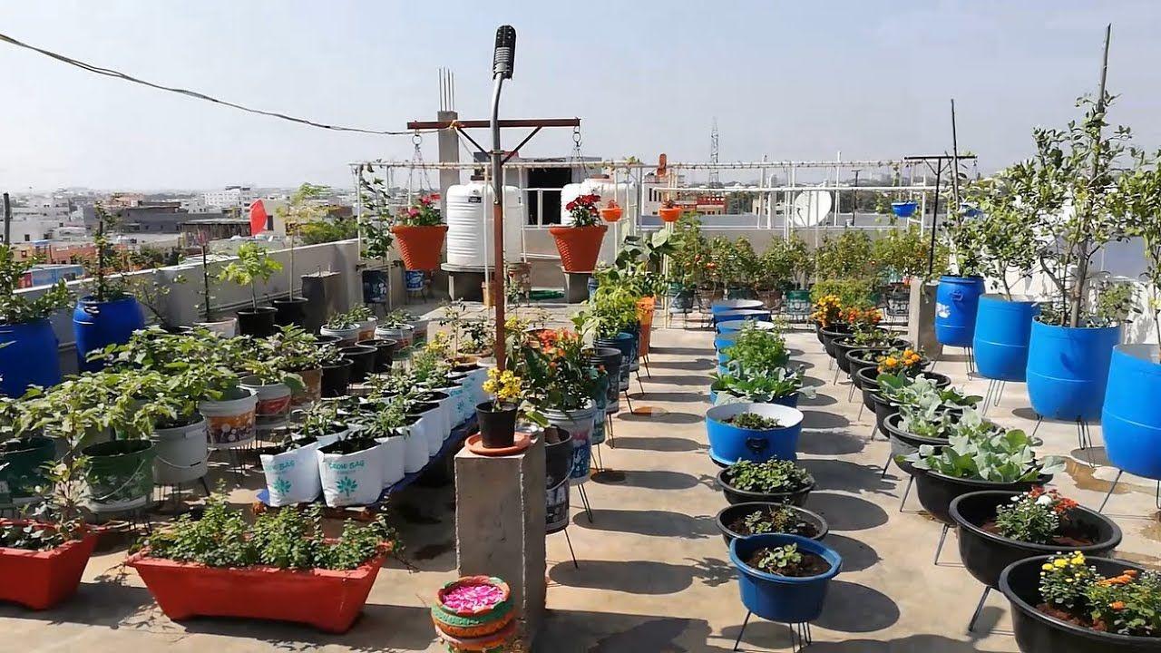 0d0eb19052fdb233a06f65e09f364c8a - What Is The Purpose Of Terrace Gardening