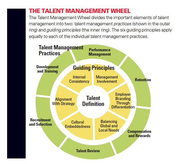 Talent management in academia performance systems