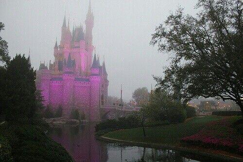 Cinderella's castle....