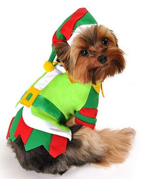 Santa S Lil Helper Dog Costume Puprwear Com Christmas Dog