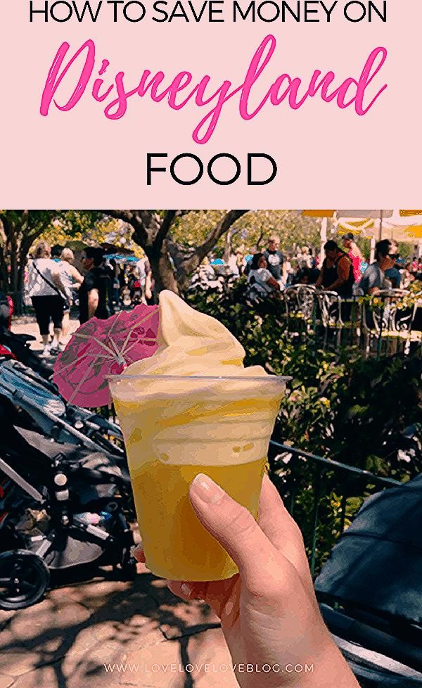 Photo of The Ultimate Guide On How To Save Money At Disneyland