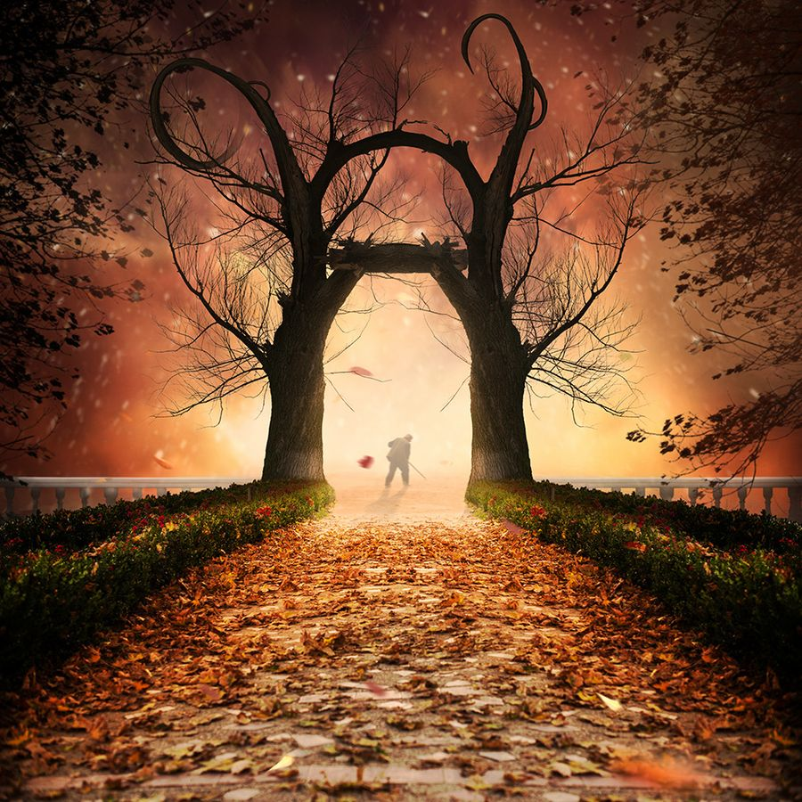 """500px / Photo """"The wizard"""" by Caras Ionut"""