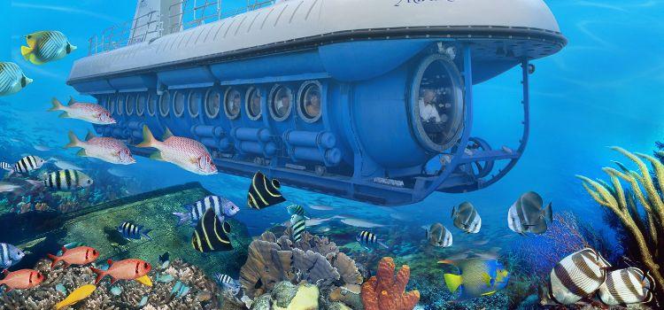 viaje en submarino en hawaii estados unidos
