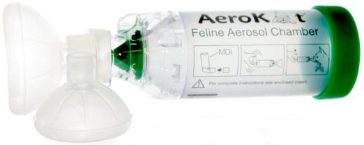 aerokat feline aerosol chamber for cats feline asthma pinterest