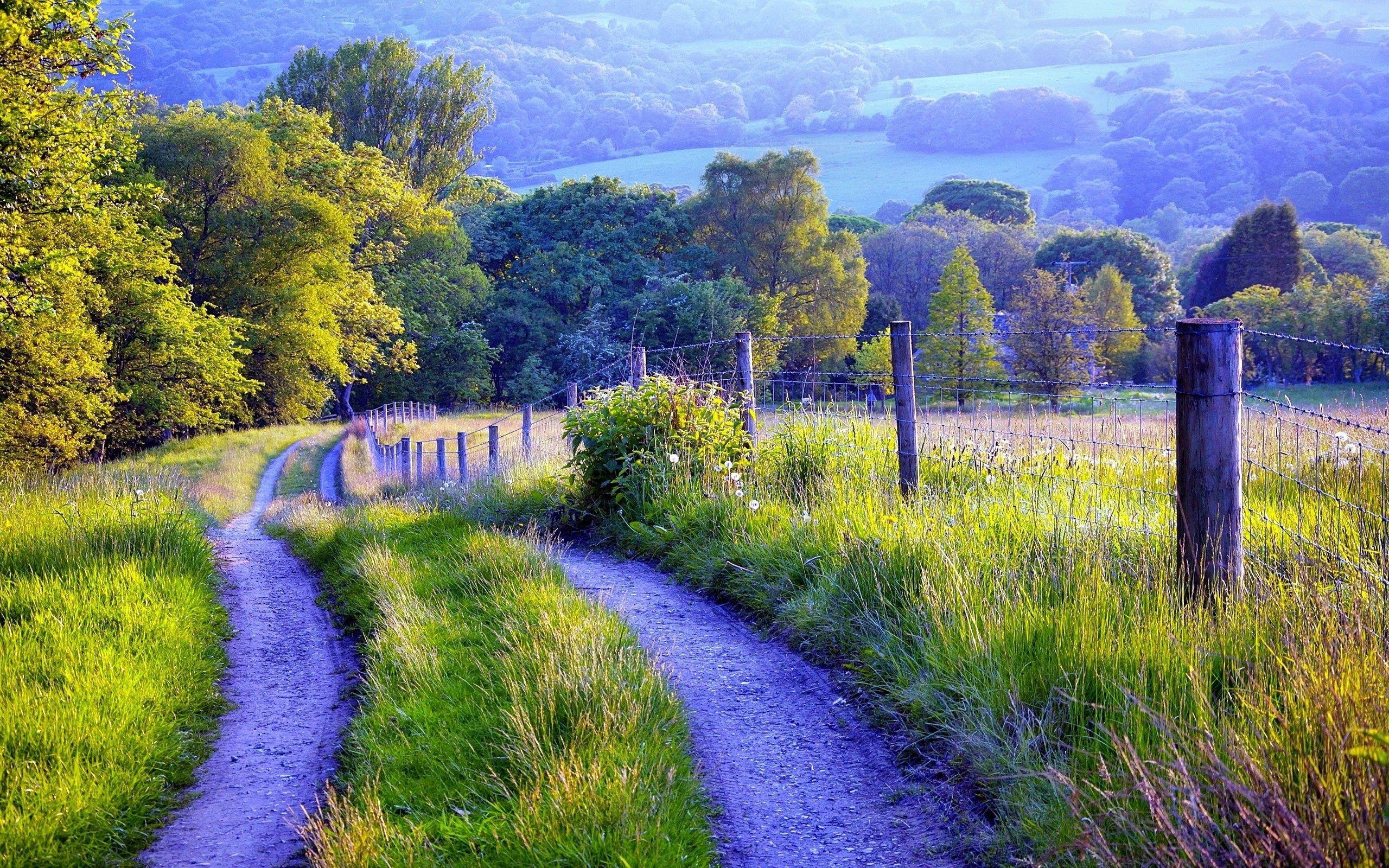 Paysage de nature d une cl´ture route herbe arbres Fonds d