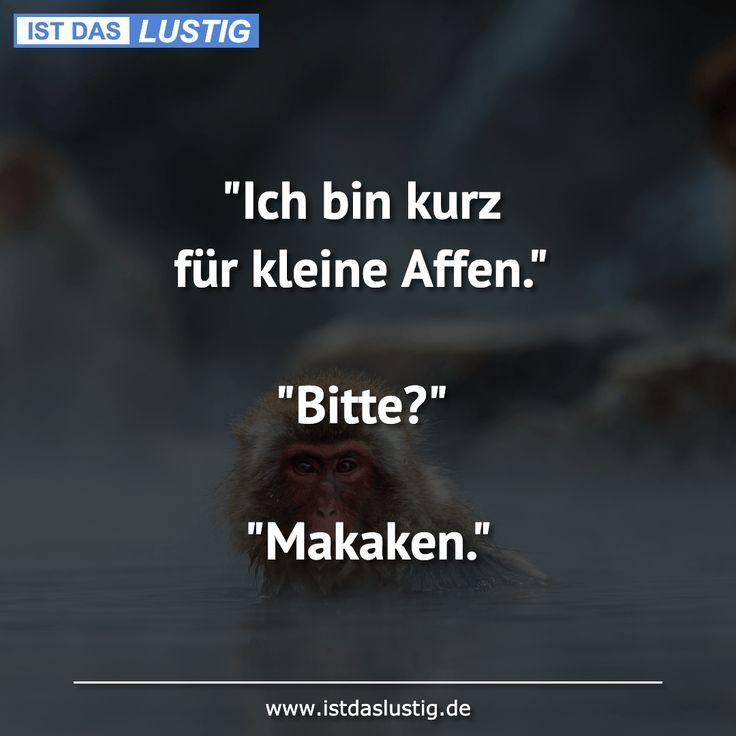 Ich Bin Kurz Fur Kleine Affen Bitte Maka Affen Bin Bitte Fur Ich Kleine Kurz Kurze Maka Zitate Lustig Witzige Spruche Urkomische Zitate
