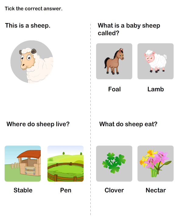 Farm Animal Worksheet 4 science Worksheets kindergarten – Science Worksheet for Kindergarten
