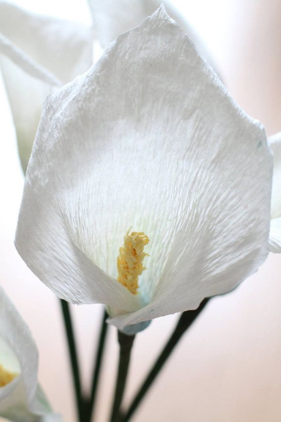 lilie kerzenhalter basteln anleitung, calla lily flowers wedding calla lily decoration by redflowershop, Design ideen