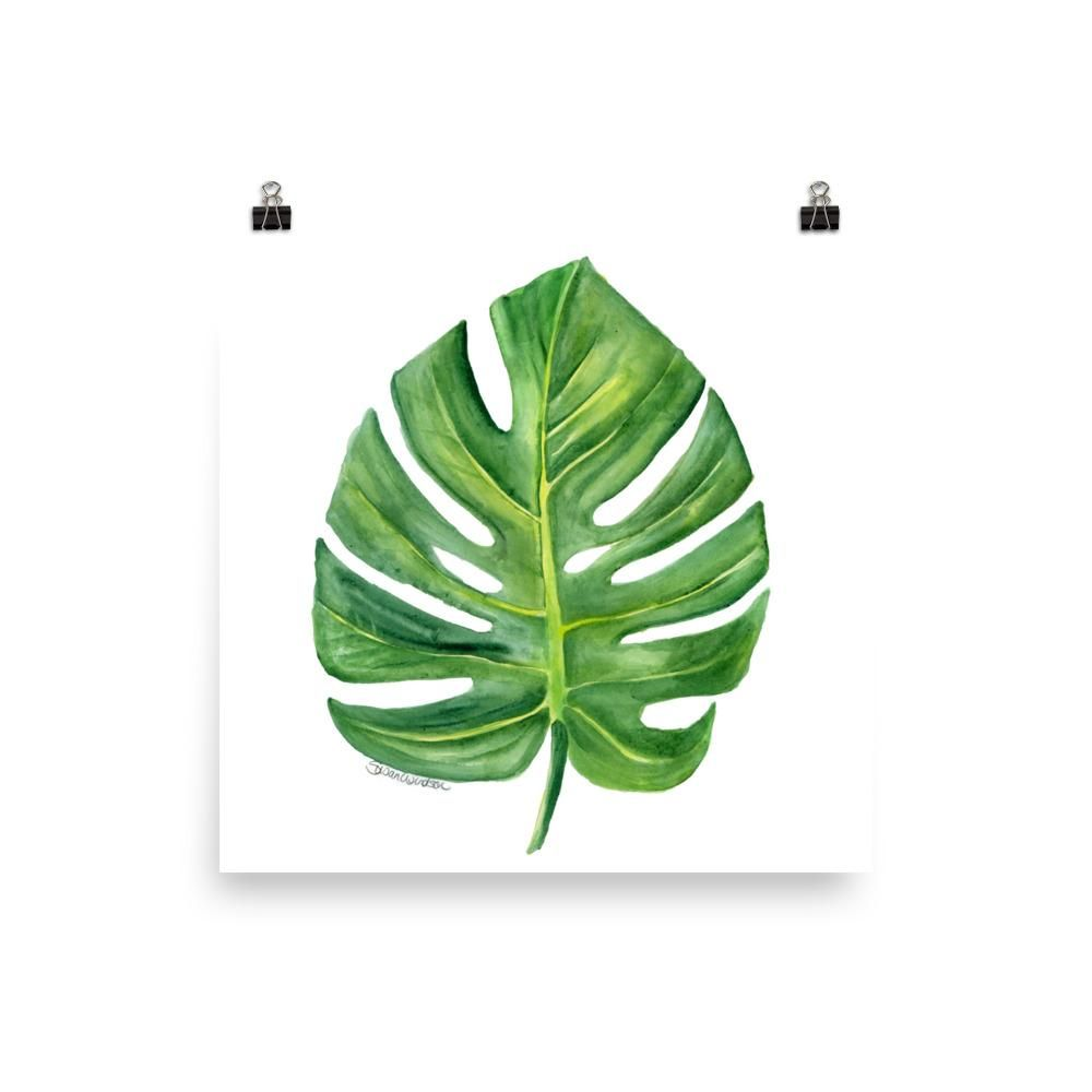 Monstera Leaf Watercolor For The Home Plant Painting