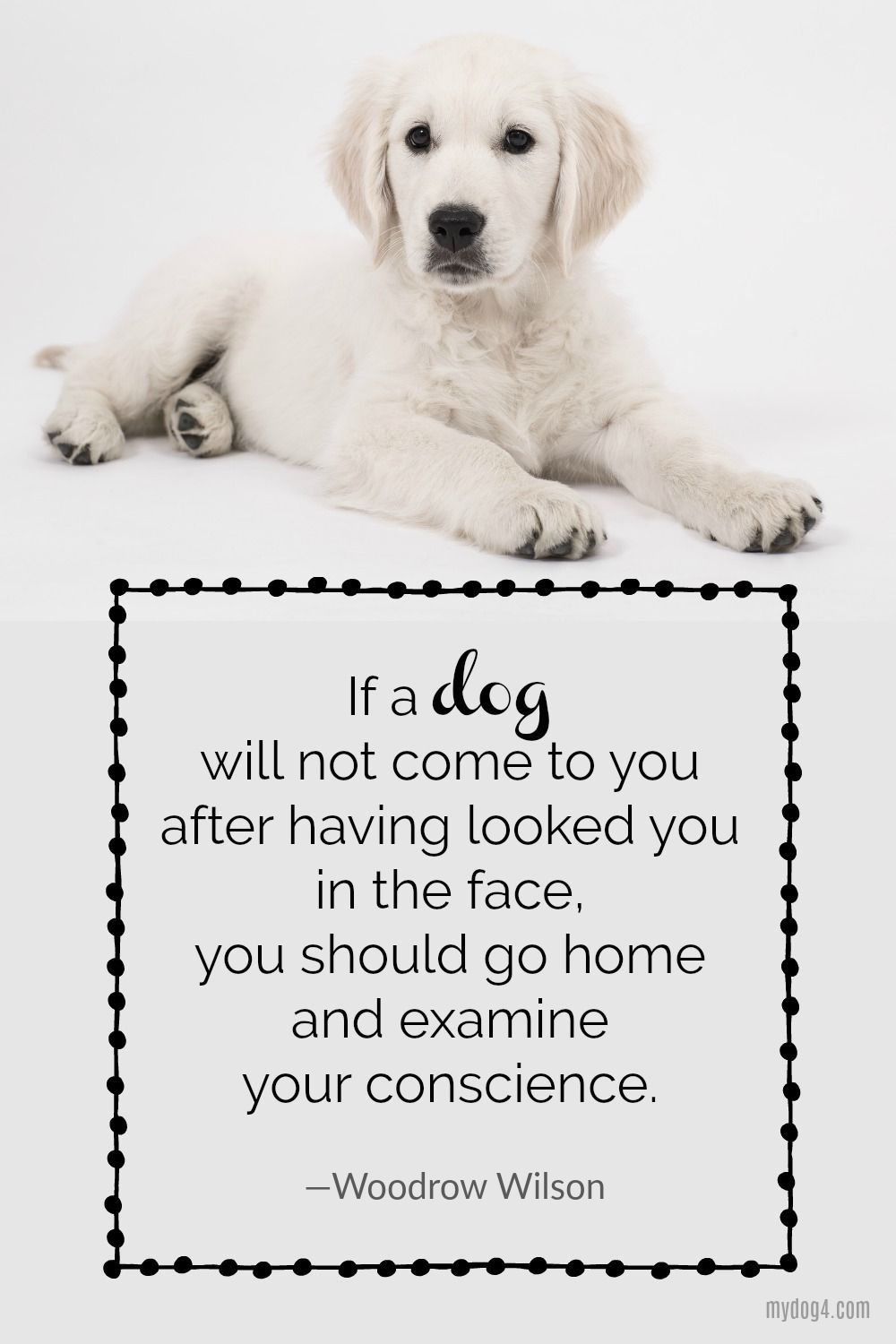 Dog Quotes, Dog Love, Puppy #3 #new #pinterest #love