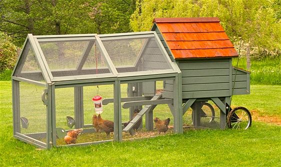 Lovely Williams and sonoma Chicken Coop