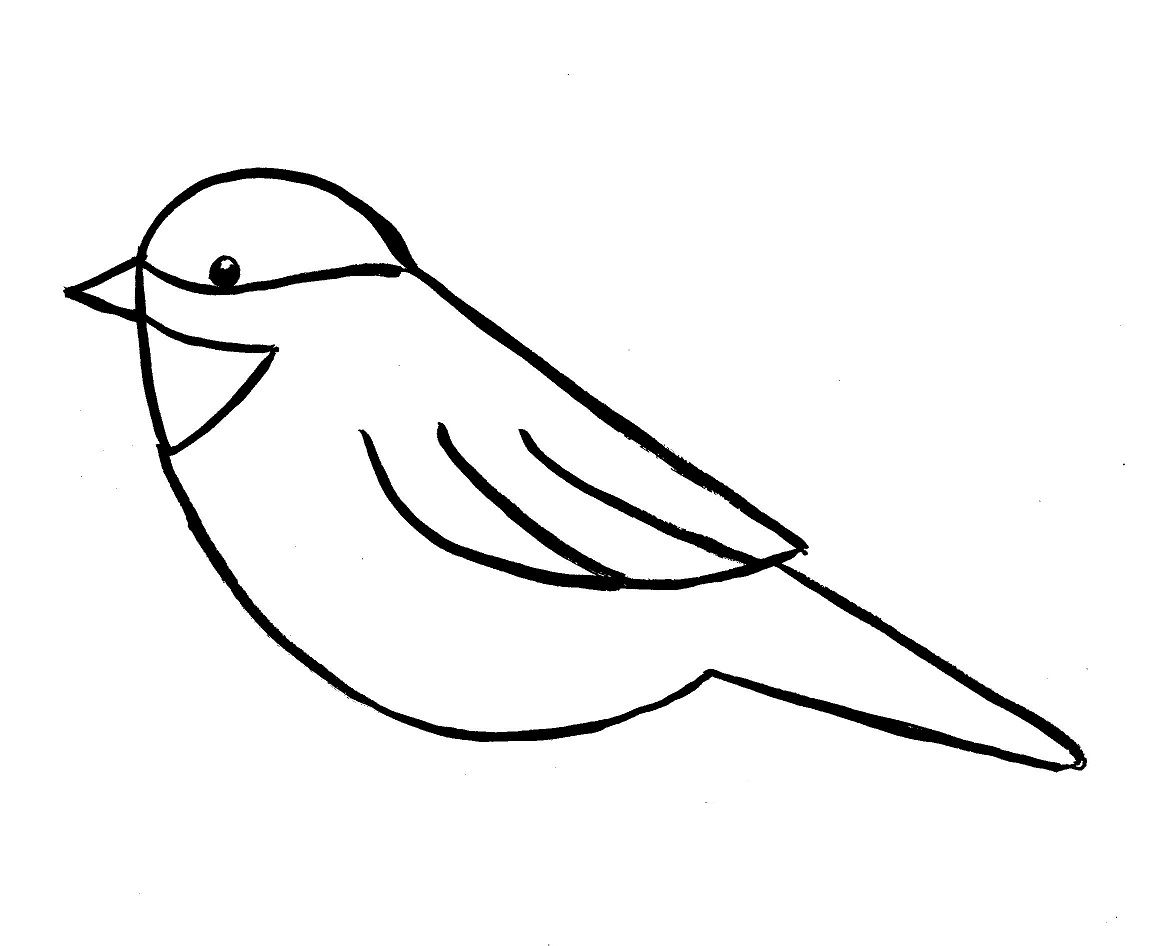 Simple Scribble Drawing : Simple bird on branch drawing cu designs pinterest