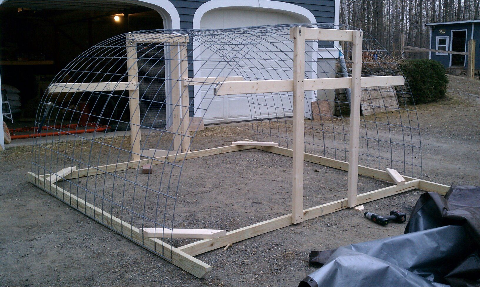 hoop house made of cattle panels and a covering of chicken wire ...