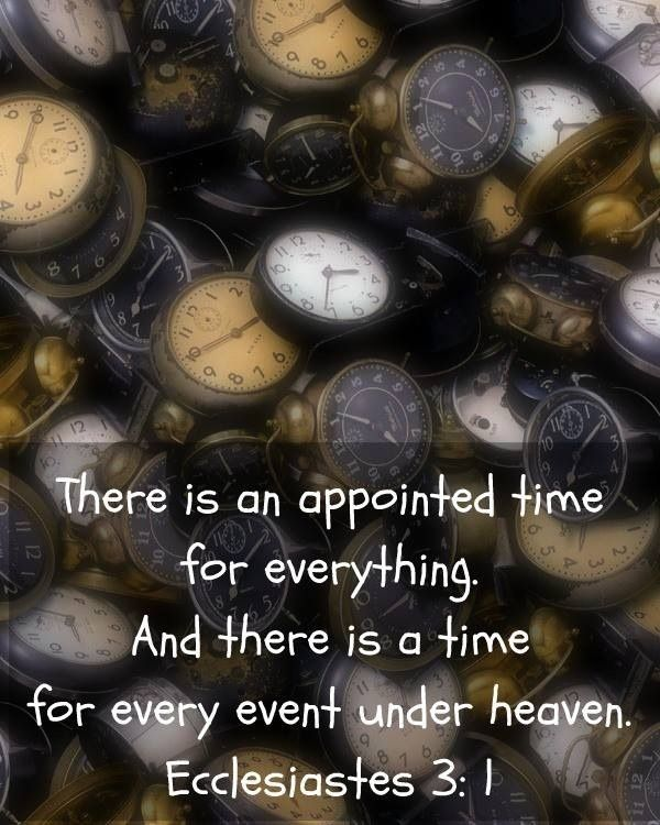 An appointed time for everything quotes time faith bible