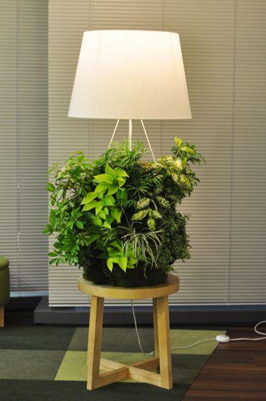 壁面緑化の技術で作られたスタンド照明。Stand lighting made with the technology of the green-wall.
