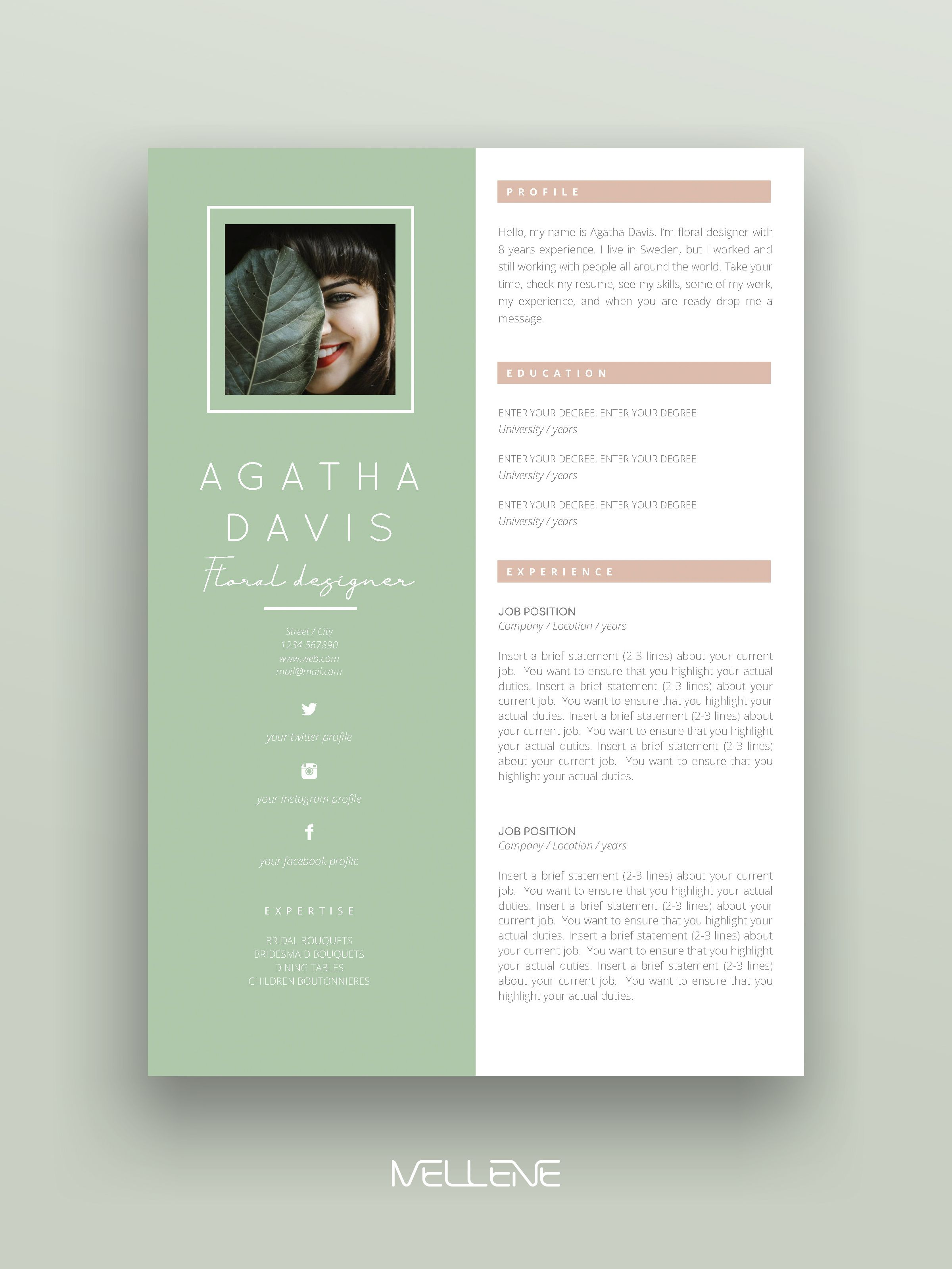 Resume Template 3 Pages Cv Template Cover Letter Instant Etsy Resume Design Inspiration Personal Branding Design Graphic Design Resume