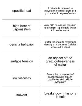 Chemistry Of Life Worksheet