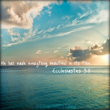 Ecclesiastes 3:11    This is my favorite Bible verse. Do yourself a favor and read Ecclesiastes 3!