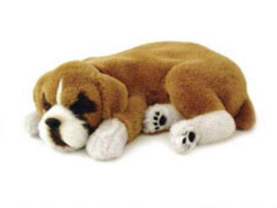 Perfect Petzzz Boxer Puppy Monstermarketplace Com Boxer Puppy
