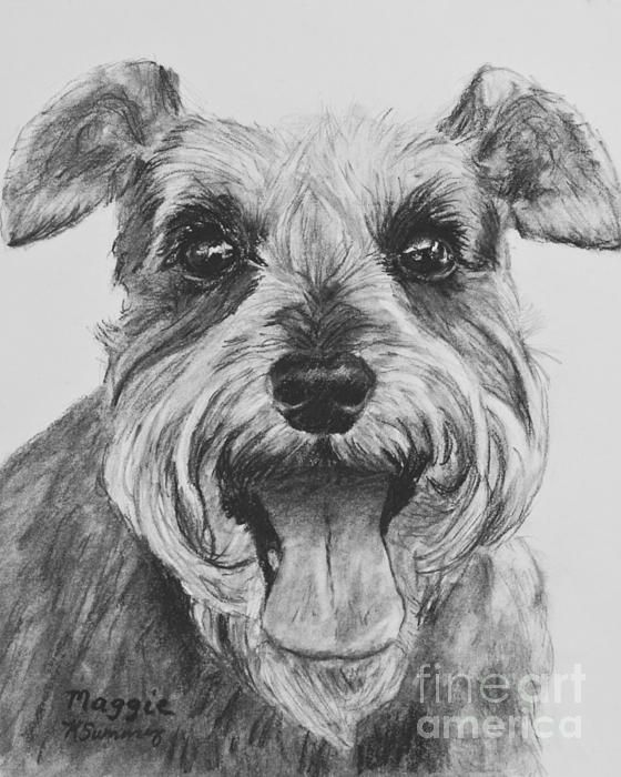 Schnauzer Drawing Easy: Schnauzer Dog Print Drawing