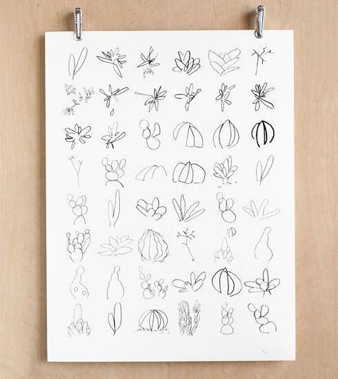 Minimalistic Succulent Sketches Makelike Poster