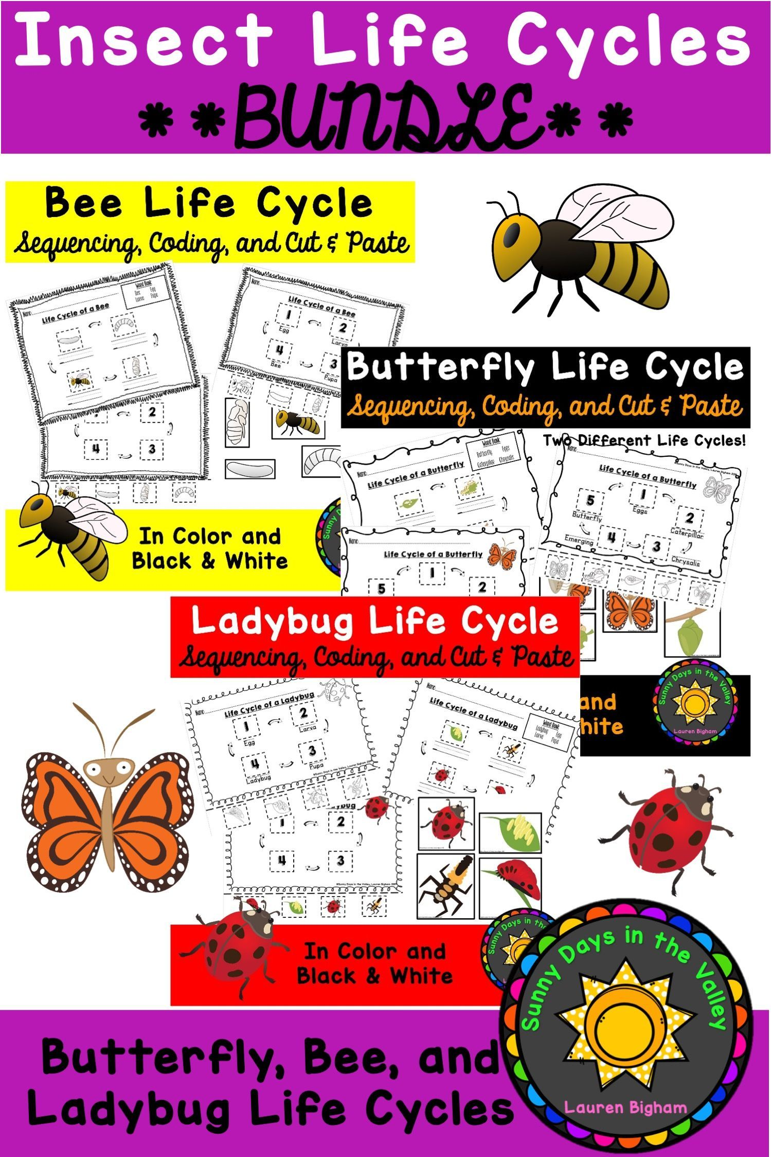 Insect Life Cycle Bundle Bee Butterfly And Ladybug