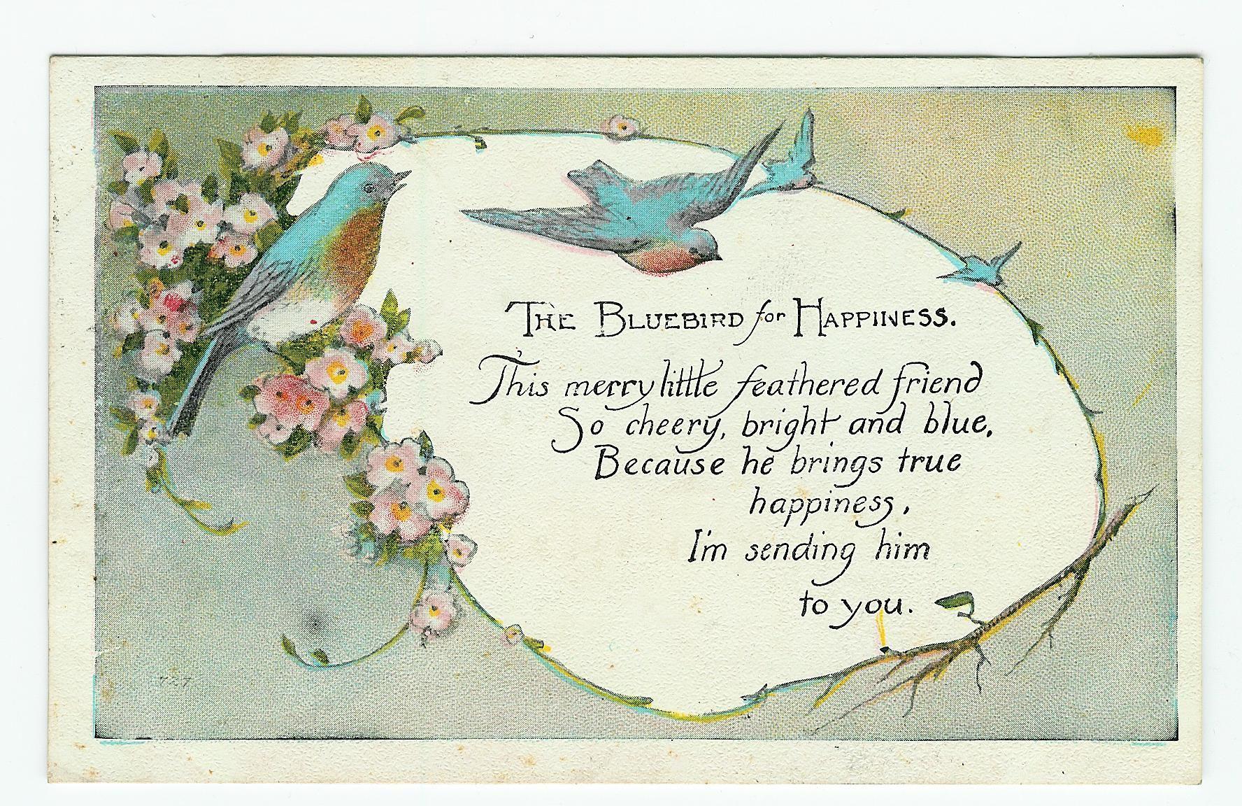 Bluebird of happiness happiness of bluebirds happiness poem bluebird of happiness happiness of bluebirds biocorpaavc