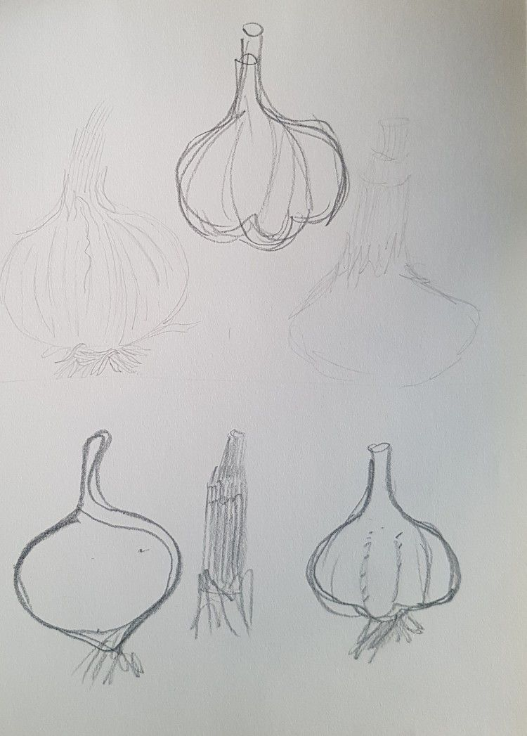 food for thought part 1 draft sketches garlic
