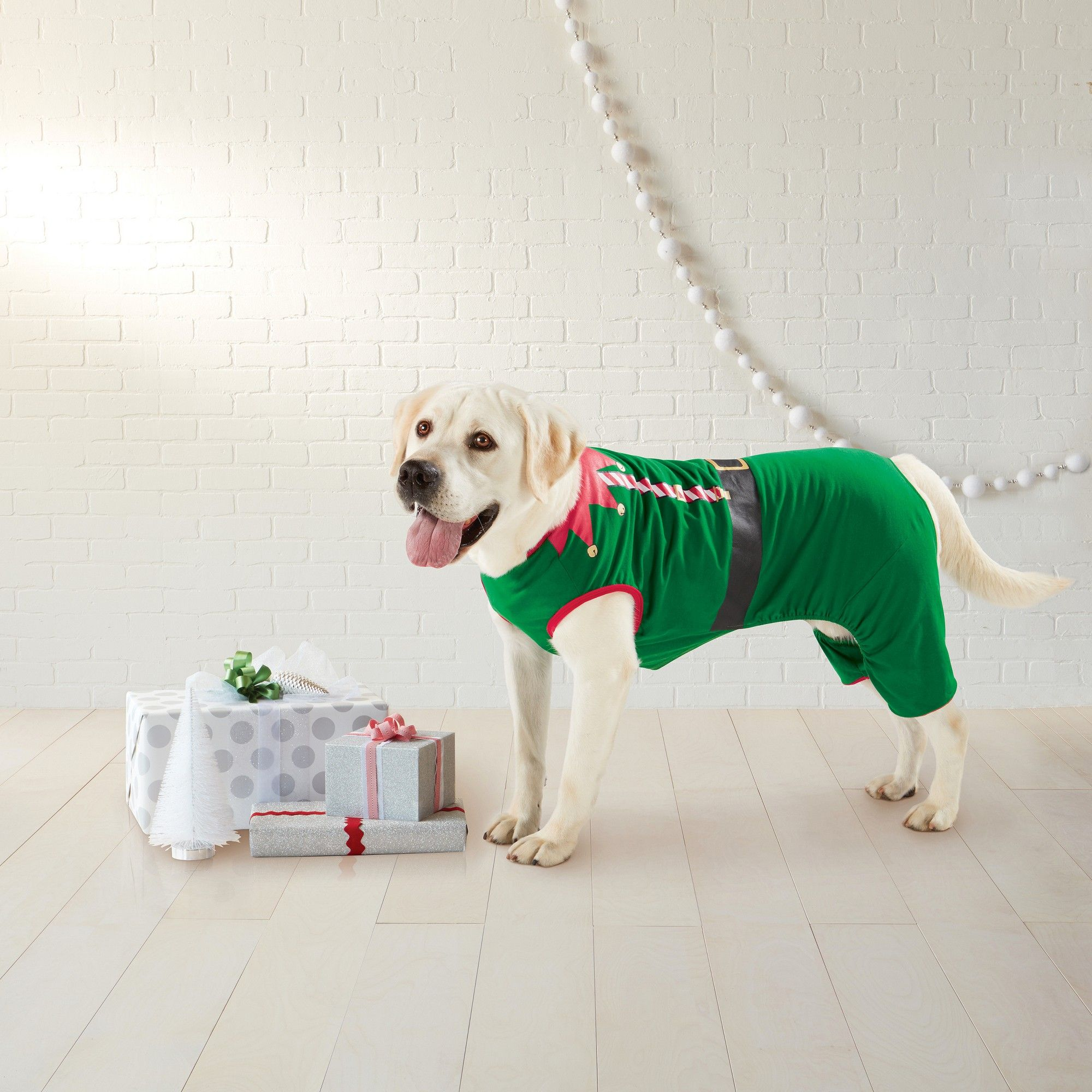 Elf Family Holiday Dog Pajamas Small Black