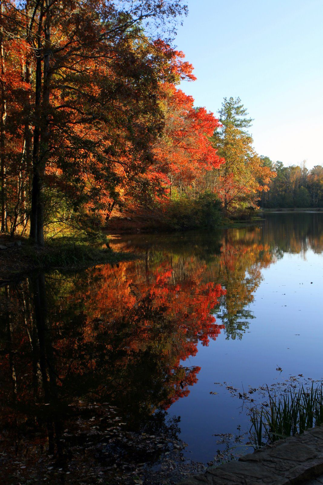 callaway gardens in the fall... so many wonderful days spent here ...
