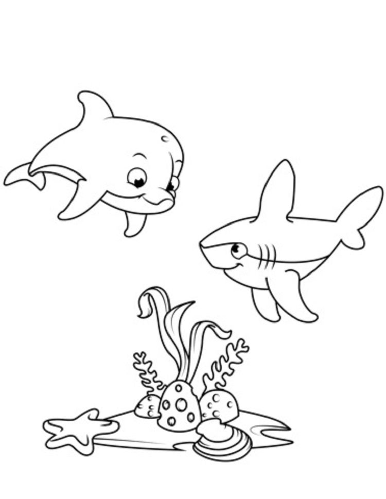 Cute Dolphin And Shark Coloring Pages Dolphin Coloring Pages Shark Coloring Pages Cute Coloring Pages