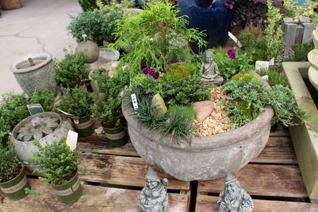 Outdoor miniature gardens from The Barn Nursery, Chattanooga, Tn I