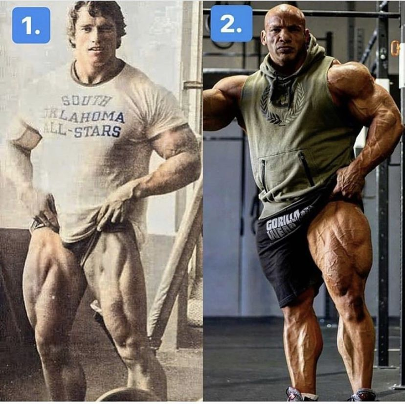 definizione bodybuilding Reviewed: What Can One Learn From Other's Mistakes