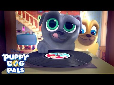 Hawaii Pug Oh A R F Full Episode Puppy Dog Pals Disney
