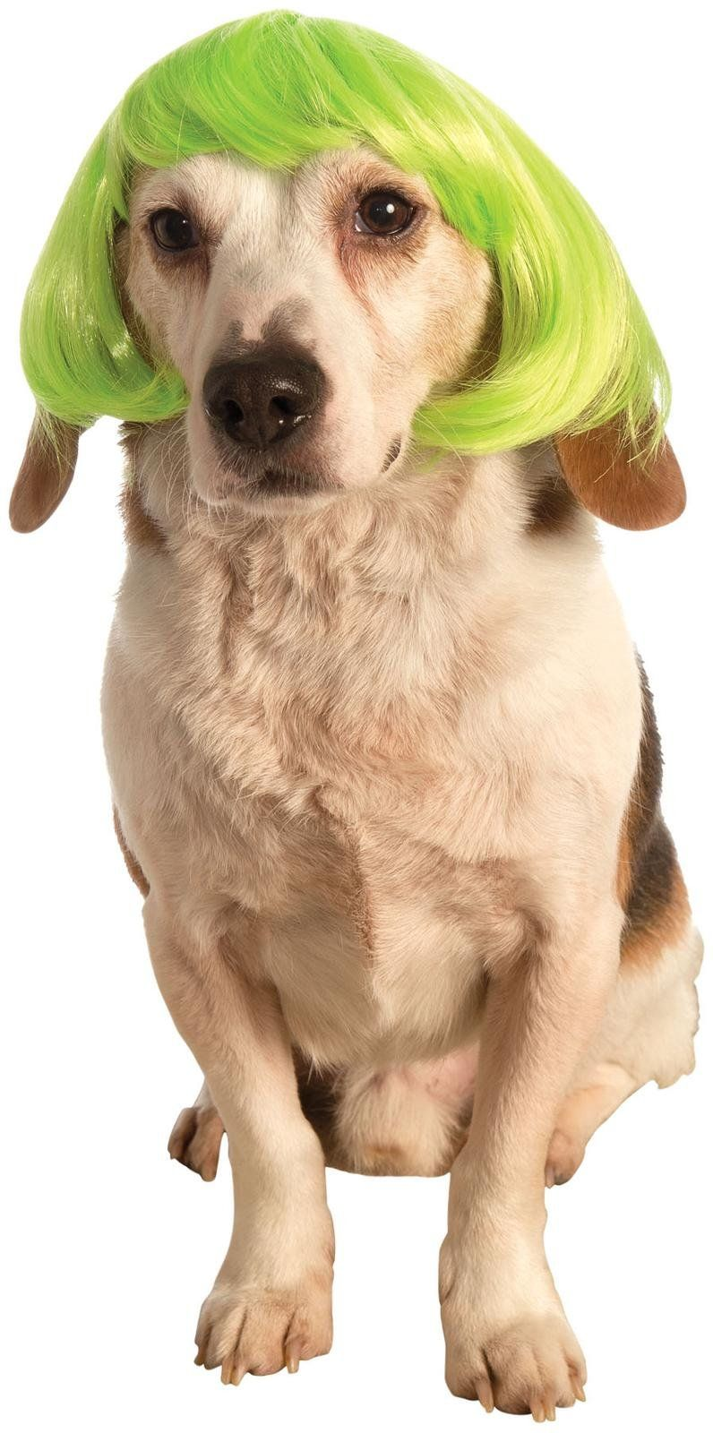 Is your dog a real go go girl This short bob pet wig in neon green