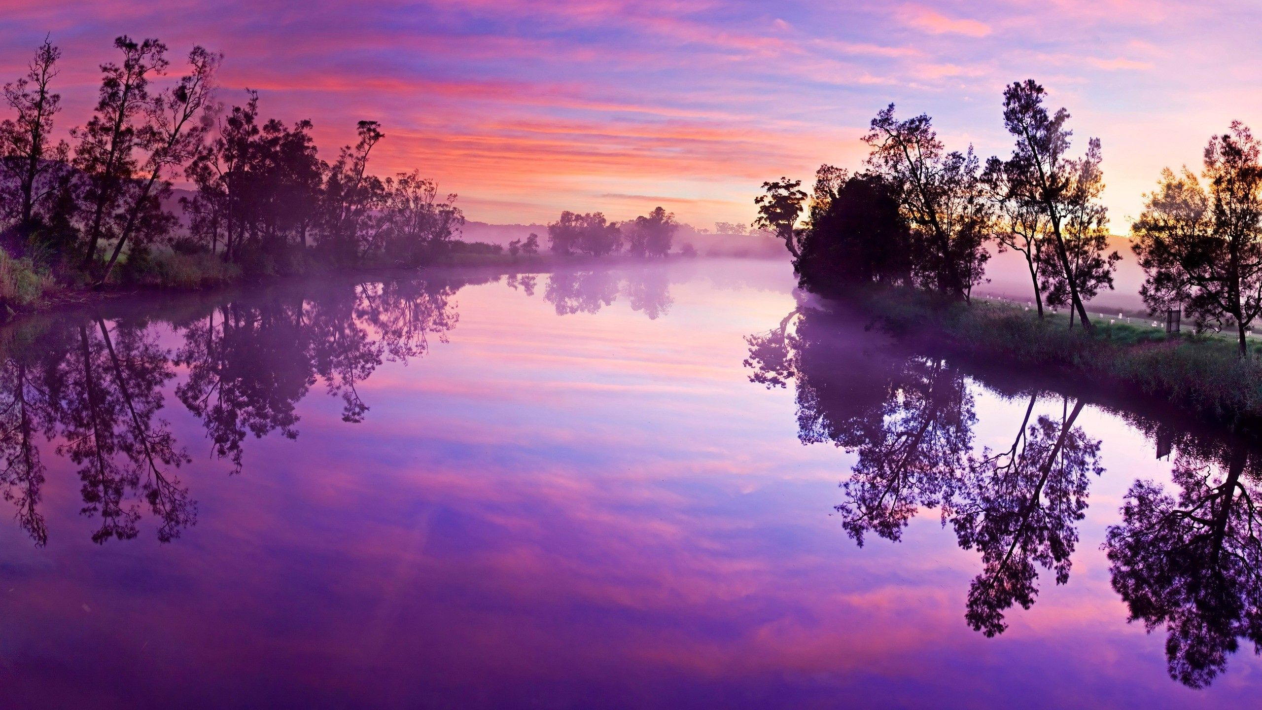 Purple red sunset Wallpaper in 2560x1440 Sunset