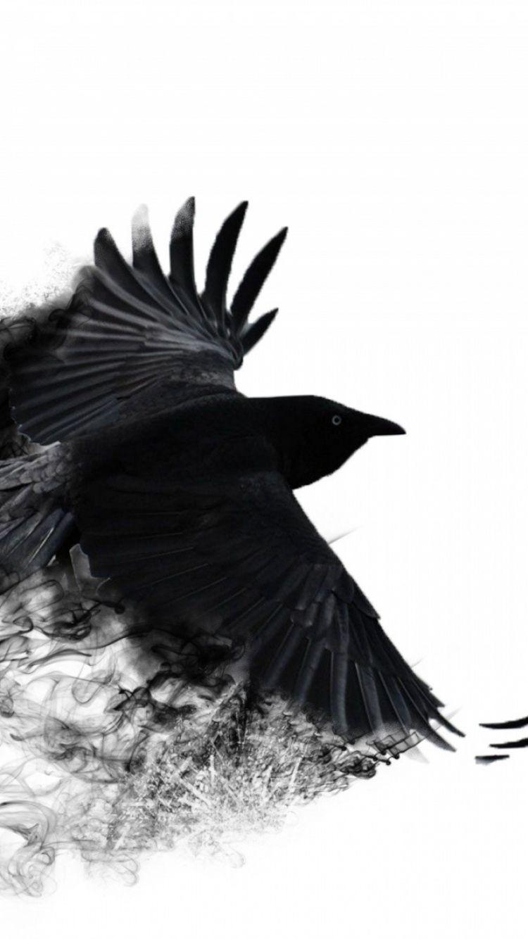 Crow Wallpaper Phone wallpeper in 2019