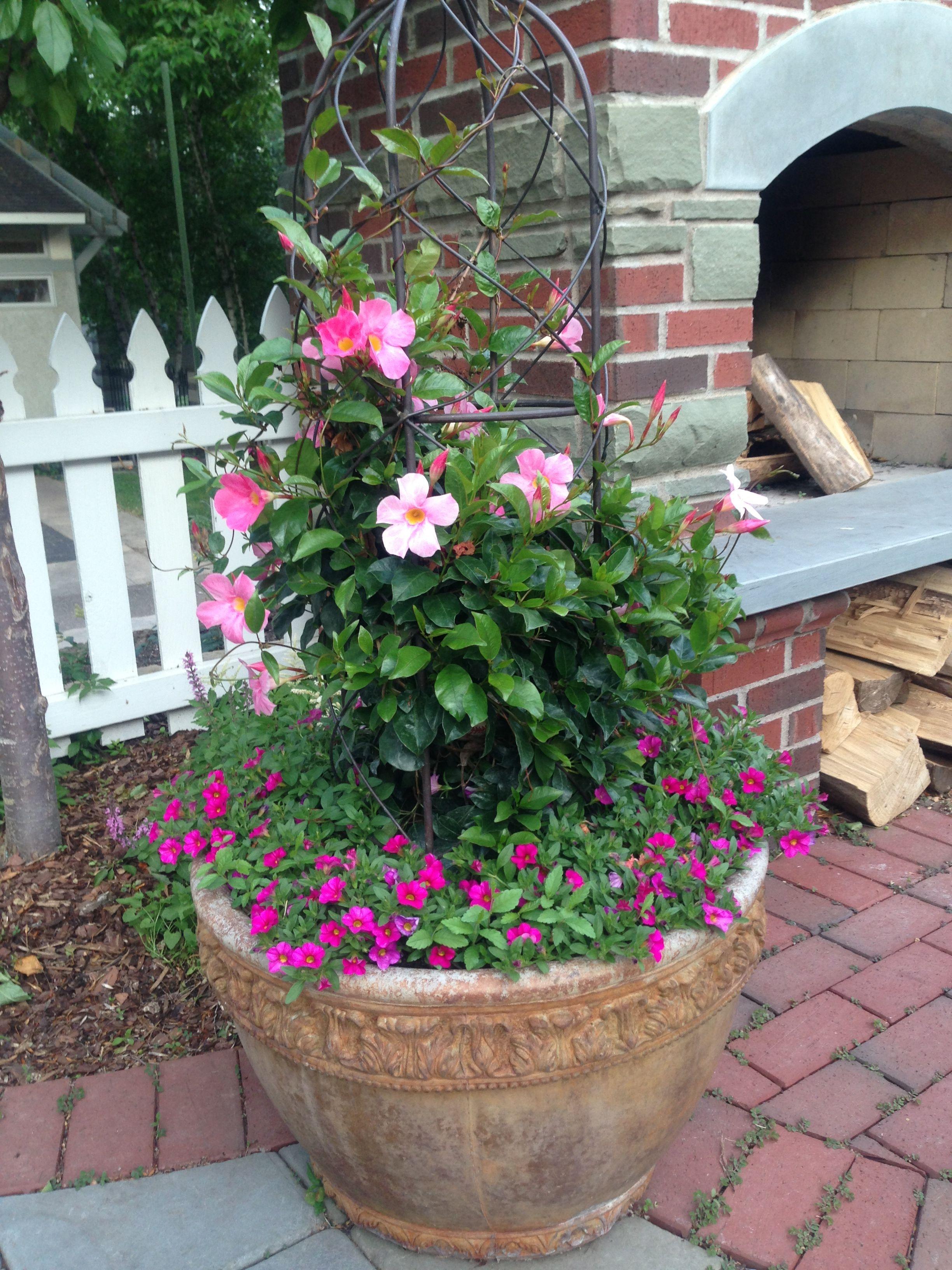 Beautiful flower arrangement Flowers & Gardens