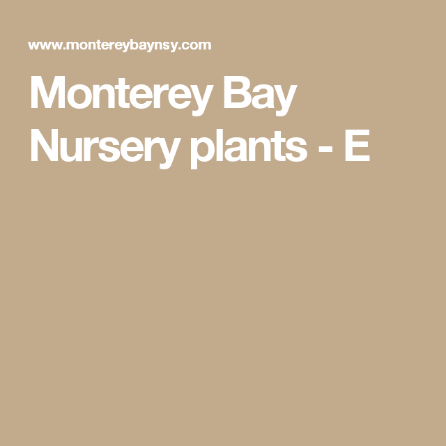 Monterey Bay Nursery Plants E