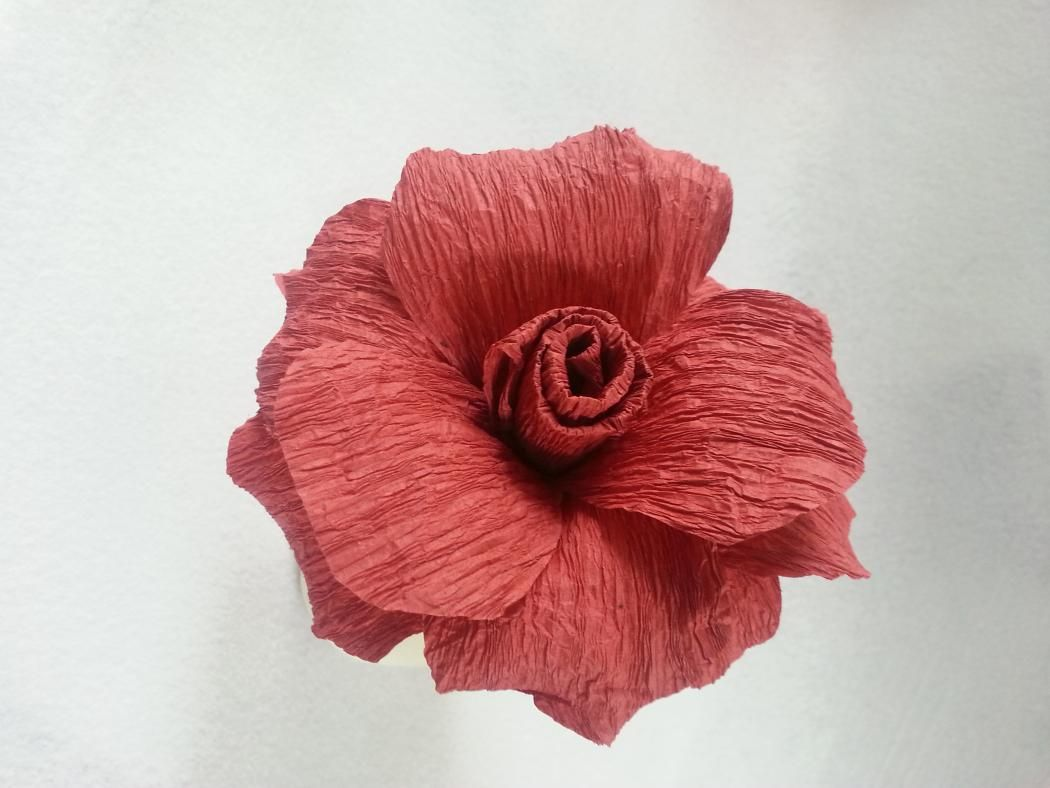 How To Make Crepe Paper Flowers Pinterest Crepe Paper Streamers