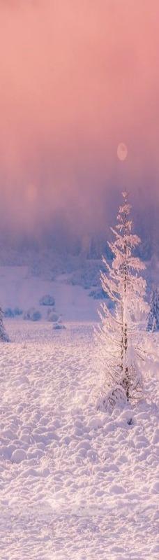 ponderation: A Winter's Tale by Birgit Franik