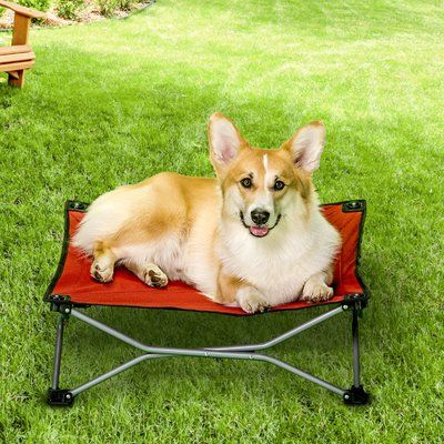 Tucker Murphy Pet Geneva Pup Travel Dog Cot Size Large 48 W X 26 D X 9 H Color Red Products In 2019 Dog Cots Dog Bed Cool Dog Beds