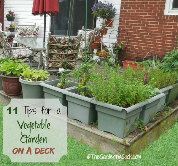 Good 11 Tips For Growing A Vegetable Garden On A Deck