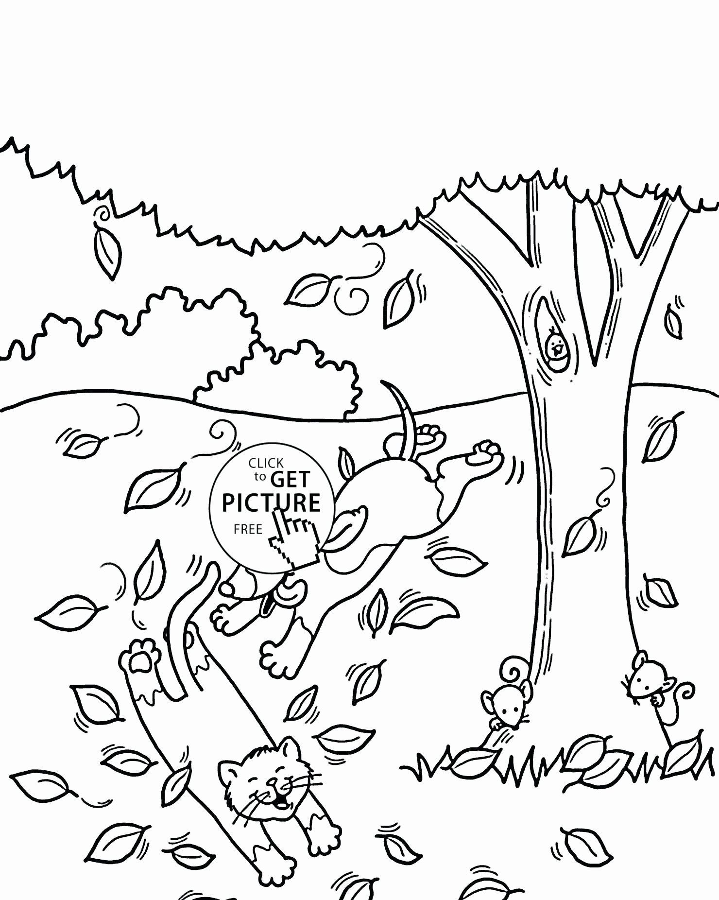 Coloring Autumn Tree In