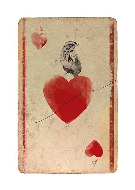 vintage playing card ace of hearts with bird design