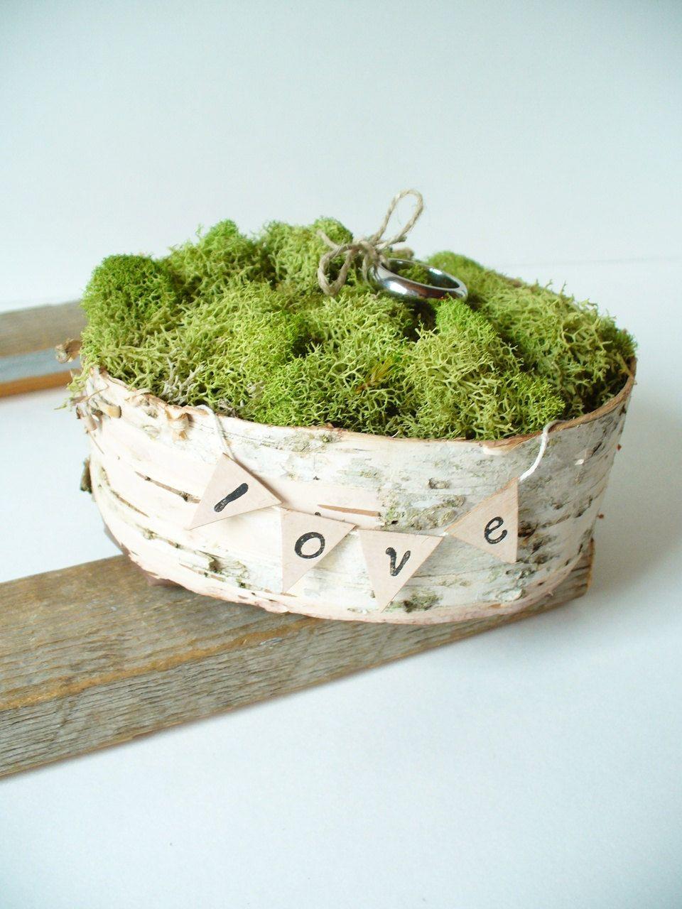 Ringe auf Moos gebettet hochzeit ringe pflanze moos