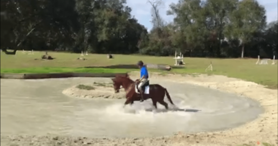 Could a Conditioning Pond Be the Next Best Thing in Horse