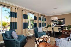 Designer Living Room by Kerrie Kelly Design Lab