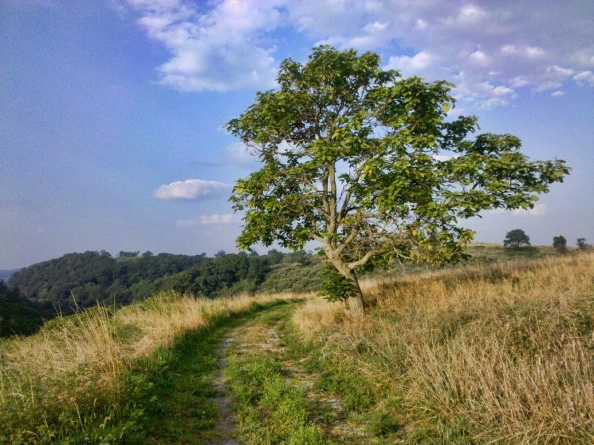 6 places to hike in the lehigh valley to remember pinterest