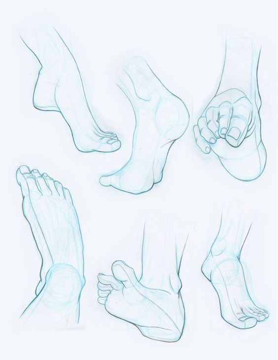 Pin by john scrogum on drawing feet | Pinterest | Anatomy, Foot ...